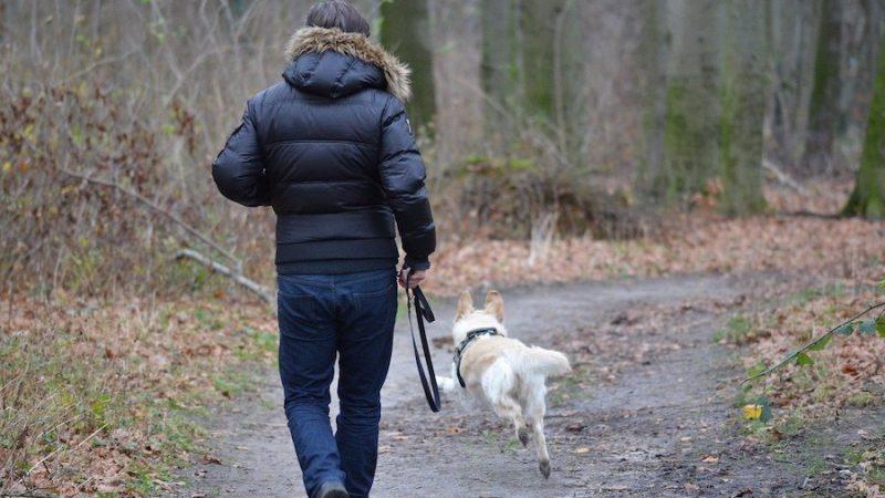 """Lennart Stålbrants hund har inte lärt sig ordet """"Nej"""" ännu"""